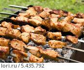 Купить «Шашлык из жареной курицы на гриле», фото № 5435792, снято 29 июня 2013 г. (c) Елена Силкова / Фотобанк Лори