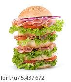 Купить «Большой гамбургер», фото № 5437672, снято 11 марта 2011 г. (c) Natalja Stotika / Фотобанк Лори