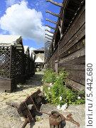 Купить «Сельский пейзаж», фото № 5442680, снято 7 июля 2013 г. (c) Федюнин Александр / Фотобанк Лори