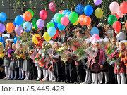 Купить «Первоклассники на первой школьной линейке», эксклюзивное фото № 5445428, снято 1 сентября 2013 г. (c) Анатолий Матвейчук / Фотобанк Лори