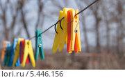 Бельевая веревка с разноцветными прищепками на фоне деревьев без листьев. Стоковое фото, фотограф Александр Сосюра / Фотобанк Лори