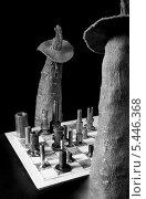 Шахматисты. Стоковое фото, фотограф Камиль Гумеров / Фотобанк Лори
