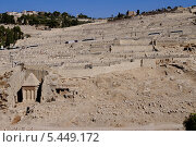 Купить «Гробницы и кладбище в Кедронской долине у подножия Масличной горы. Иерусалим, Израиль», фото № 5449172, снято 27 октября 2013 г. (c) Илюхина Наталья / Фотобанк Лори