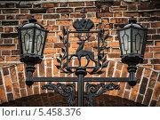 Купить «Фонарь с гербом города Нижнего Новгорода в Кремле», фото № 5458376, снято 4 октября 2013 г. (c) Наталья Гнелицкая / Фотобанк Лори