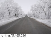Зимняя дорога. Стоковое фото, фотограф Артем Викторович Чистяков / Фотобанк Лори