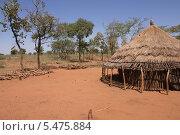 Дом с соломенной крышей, Эфиопия, Африка (2013 год). Стоковое фото, фотограф Михаил Пряхин / Фотобанк Лори