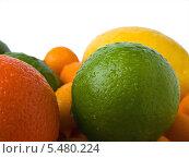 Влажные цитрусовые фрукты (апельсин, лайм, кумкват, помело) Стоковое фото, фотограф Владимир Киликовский / Фотобанк Лори