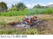 Костер на траве в летний солнечный день. Стоковое фото, фотограф FotograFF / Фотобанк Лори