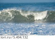 Купить «Гребень океанской волны», фото № 5494132, снято 29 декабря 2013 г. (c) Татьяна Кахилл / Фотобанк Лори