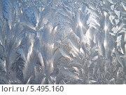 Купить «Морозные узоры», фото № 5495160, снято 18 января 2014 г. (c) Наталья Волкова / Фотобанк Лори