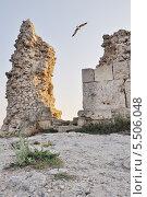 Купить «Развалины стен Херсонеса Таврического», фото № 5506048, снято 12 июля 2013 г. (c) Ярослав Крючка / Фотобанк Лори