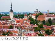 Купить «Таллин. Вид с колокольни Олевисте. Эстония», фото № 5511112, снято 14 июня 2013 г. (c) Катерина Макарова / Фотобанк Лори