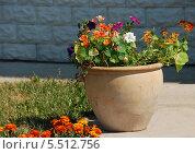 Купить «Красивый глиняный вазон декоративными цветами на территории монастыря в солнечный летний день», эксклюзивное фото № 5512756, снято 17 июля 2010 г. (c) lana1501 / Фотобанк Лори