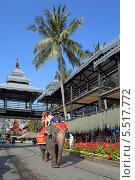 Купить «Катание на слонах. Тропический парк Нонг Нуч (Nong Nooch Tropical Garden), Королевство Таиланд», фото № 5517772, снято 27 декабря 2013 г. (c) Григорий Писоцкий / Фотобанк Лори