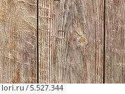 Древесина. Текстура. Стоковое фото, фотограф Беляева Елена / Фотобанк Лори