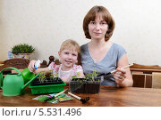 Купить «Мама с дочкой ухаживают за рассадой», фото № 5531496, снято 27 января 2014 г. (c) Марина Славина / Фотобанк Лори