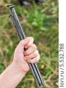 Купить «Большие гвозди в детской руке», фото № 5532788, снято 11 августа 2011 г. (c) Володина Ольга / Фотобанк Лори