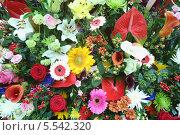 Купить «Красивый большой букет из калл, лилий, роз и гербер», фото № 5542320, снято 4 сентября 2012 г. (c) Losevsky Pavel / Фотобанк Лори