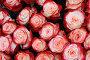 Яркие розовые розы, фон, фото № 5542372, снято 4 сентября 2012 г. (c) Losevsky Pavel / Фотобанк Лори
