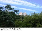 Вид на гору Ай-Петри из Воронцовского парка в Алупке (2013 год). Стоковое фото, фотограф Дмитрий Булатов / Фотобанк Лори