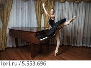 Купить «Балерина в черной пачке у рояля», фото № 5553696, снято 1 февраля 2014 г. (c) Бандуренко Андрей / Фотобанк Лори