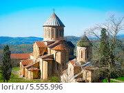 Купить «Знаменитый Гелатский монастырь, Грузия», фото № 5555996, снято 10 ноября 2013 г. (c) Иван Нестеров / Фотобанк Лори