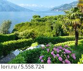 Купить «Побережье озера Комо (Италия)», фото № 5558724, снято 15 июня 2012 г. (c) Юрий Брыкайло / Фотобанк Лори