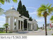Набережная города Сухума, Абхазия (2013 год). Редакционное фото, фотограф Сергей / Фотобанк Лори