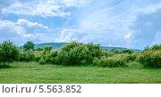 Летний Пейзаж. Стоковое фото, фотограф Петренко Иван / Фотобанк Лори