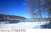 Купить «Байкал. Льдины плывут по реке Ангаре. Покрытые инеем ветки колышутся на ветру», видеоролик № 5564012, снято 8 февраля 2014 г. (c) Виктория Катьянова / Фотобанк Лори