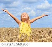 Девочка в поле пшеницы. Стоковое фото, фотограф Tanya Lomakivska / Фотобанк Лори