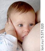 Купить «Женщина кормит ребенка грудью», фото № 5571020, снято 27 марта 2012 г. (c) Ирина Борсученко / Фотобанк Лори