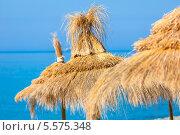 Купить «Соломенные зонты на пляже», фото № 5575348, снято 24 июля 2013 г. (c) Наталия Македа / Фотобанк Лори