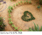 Зеленое сердце (2014 год). Редакционное фото, фотограф Daria / Фотобанк Лори