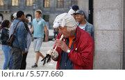 Уличный музыкант (2012 год). Редакционное фото, фотограф Татьяна Базикова / Фотобанк Лори