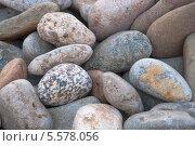 Камни у моря. Стоковое фото, фотограф Юля С. / Фотобанк Лори