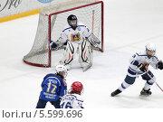 Купить «Балашиха, хоккей, борьба у ворот», эксклюзивное фото № 5599696, снято 15 февраля 2014 г. (c) ДеН / Фотобанк Лори