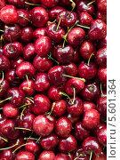Купить «Фон из вишни», фото № 5601364, снято 22 января 2014 г. (c) Руслан Кудрин / Фотобанк Лори