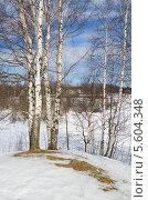 Купить «Весенний сельский пейзаж», эксклюзивное фото № 5604348, снято 9 апреля 2013 г. (c) Елена Коромыслова / Фотобанк Лори
