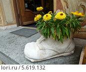 Купить «Оформление входа в цветочный магазин», фото № 5619132, снято 31 августа 2012 г. (c) Корнилова Светлана / Фотобанк Лори