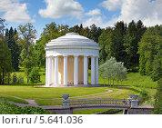 Купить «Павловск. Ротонда в парке», фото № 5641036, снято 15 июня 2013 г. (c) Куликов Константин / Фотобанк Лори
