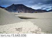 Пустыня в долине Нубра, Ладакх, Индия (2012 год). Стоковое фото, фотограф Наталия Евмененко / Фотобанк Лори