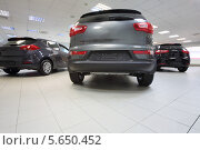 Купить «Новые автомобили в автосалоне», фото № 5650452, снято 28 августа 2012 г. (c) Losevsky Pavel / Фотобанк Лори