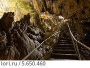 Купить «Длинная лестница, ведущая ко входу в пещеру», фото № 5650460, снято 15 июля 2012 г. (c) Losevsky Pavel / Фотобанк Лори