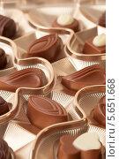 Купить «Ассорти из шоколадных конфет», фото № 5651668, снято 13 декабря 2011 г. (c) Losevsky Pavel / Фотобанк Лори