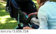 Купить «Mother checking on her sleeping baby in a pram in the park», видеоролик № 5656724, снято 23 августа 2019 г. (c) Wavebreak Media / Фотобанк Лори