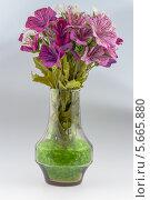 Цветы в стеклянной вазе. Стоковое фото, фотограф Сергей Филимончук / Фотобанк Лори