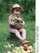 Девочка с яблоками. Стоковое фото, фотограф Светлана Шерлыгина / Фотобанк Лори