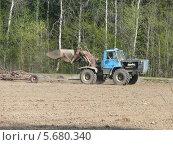 В поле. Стоковое фото, фотограф Александр Бастраков / Фотобанк Лори