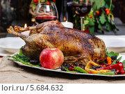 Купить «Жареная курица с яблоками на подносе», фото № 5684632, снято 28 января 2020 г. (c) BE&W Photo / Фотобанк Лори